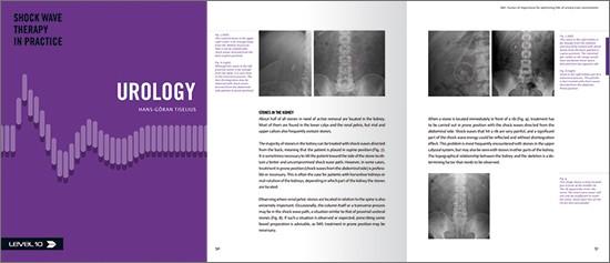 Das neue Handbuch für den Urologen